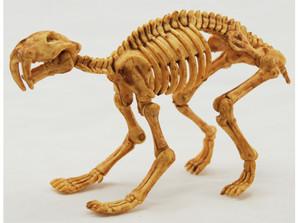 Skeleton Kits サーベルタイガー